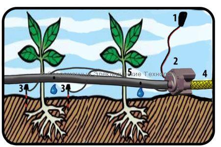 Система автополива для теплицы c датчиком влажности Огородник-1